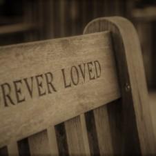 ForeverNew_Sepia (2)
